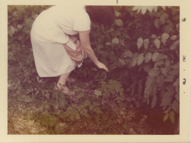 Madeline touching plants on a trail in Japan (1979)