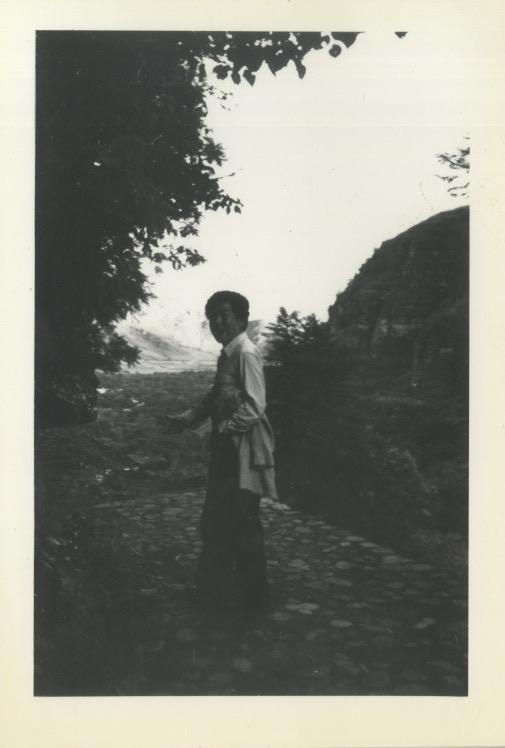 Arakawa walking on stone path near Mayan ruins